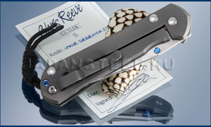 Нож складной Chris Reeve Sebenza 21 large